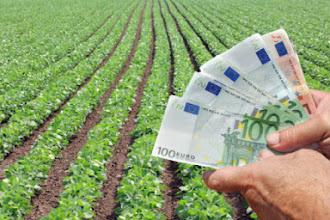 Αύριο οι Αποζημιώσεις ύψους 14,7 εκ. ευρώ από τον ΕΛ.Γ.Α. - 550,000 στο νομό Καστοριάς
