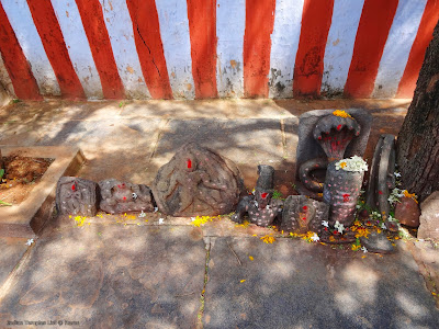 Sri Bhavani Shankara Swamy Temple near Giddalur