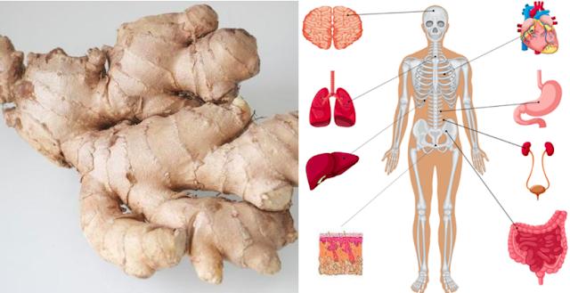 8 اشياء سوف تحدث لجسمك اذا اكلت الزنجبيل كل يوم لمدة شهر واحد