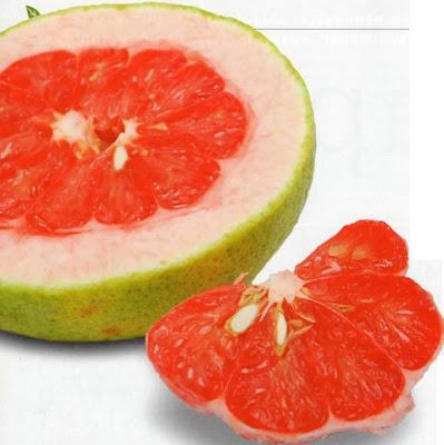 Kulit jeruk bali
