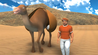 man with a camel