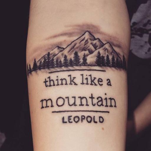 Esta montanha e floresta tatuagem acompanhado por um famoso termo de Aldo Leopold poderia dizer a mesma coisa: aprender a apreciar a interligação de todos os elementos de um ecossistema.