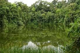 Danau Bontak