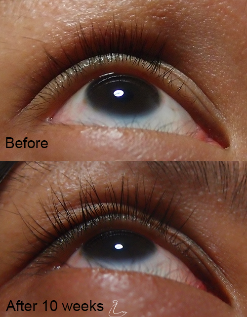 The Swanple Review Xlash Eyelash Serum And Xbrow Eyebrow Serum