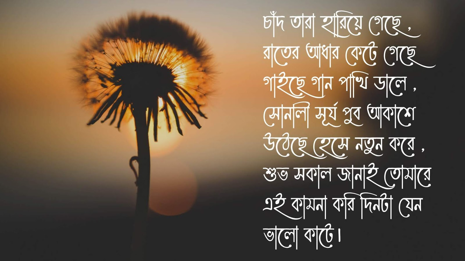 Subho Sokal sms in bengali