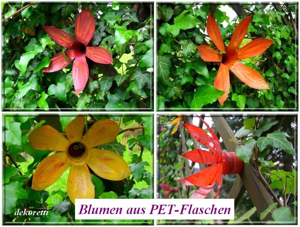 http://dekoretti.blogspot.de/2009/07/neuzuchtung-die-pflegeleichteste-blume.html