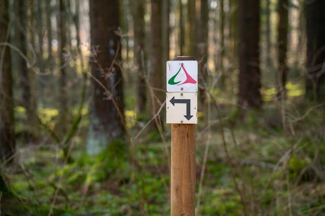 Felsentour Herbstein | Extratour Vogelsberg | Wandern in Hessen 12