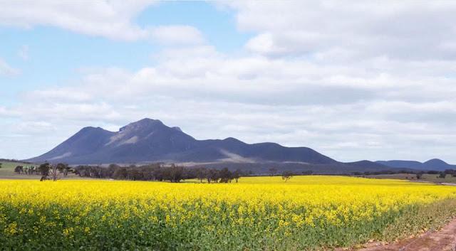Tây Úc