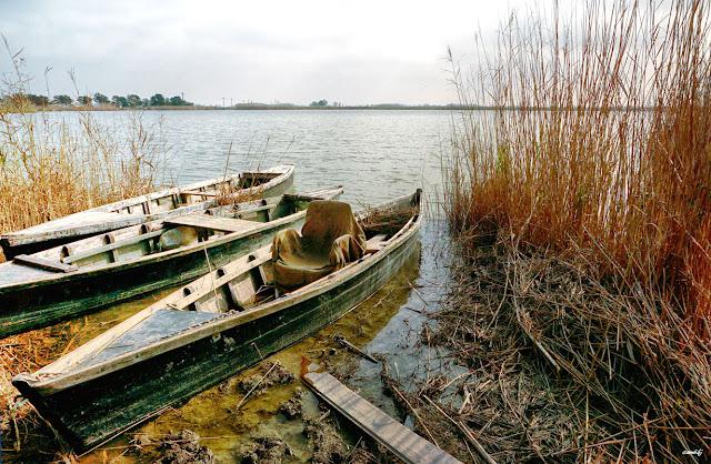 Bassa de les Olles, Delta del Ebro
