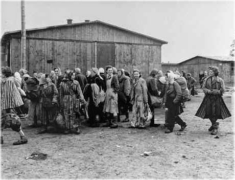 Sex slavery in Nazi Camps, The Comfort Women of the Imperial Japanese Army
