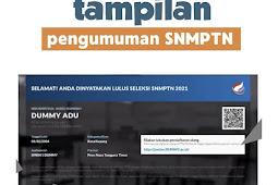 Cek Pengumuman SNMPTN dan Perhatikan Hal ini