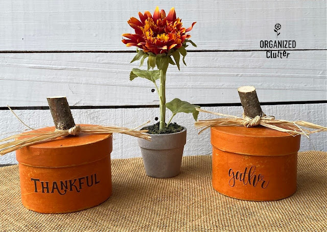 Photo of two Dollar Tree round boxes repurposed as fall pumpkins