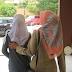 Terkini:Kisah penuh Remaja wanita di rogol 13 pemandu lori selama 12 hari