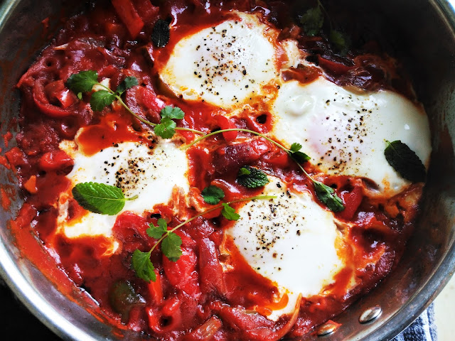 shakshuka-middle-east-traditional-food