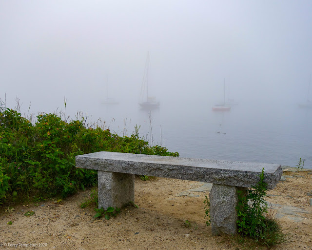 Portland, Maine USA July 2020 photo by Corey Templeton. Bench in the fog on the Eastern Promenade Trail.