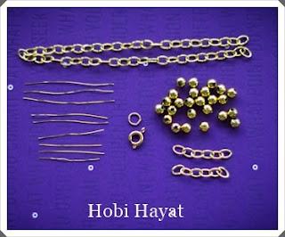 hobi1