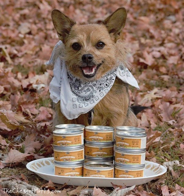 Mini Review: Merrick Thanksgiving Day Dinner Dog Food