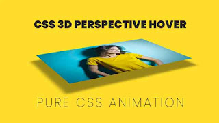 3D Perspective CSS Hover Effects