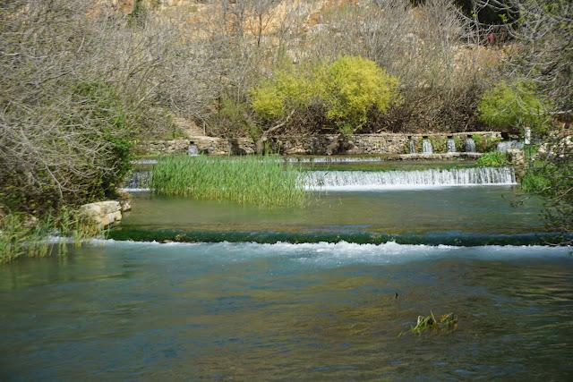 בריכות מים בניאס