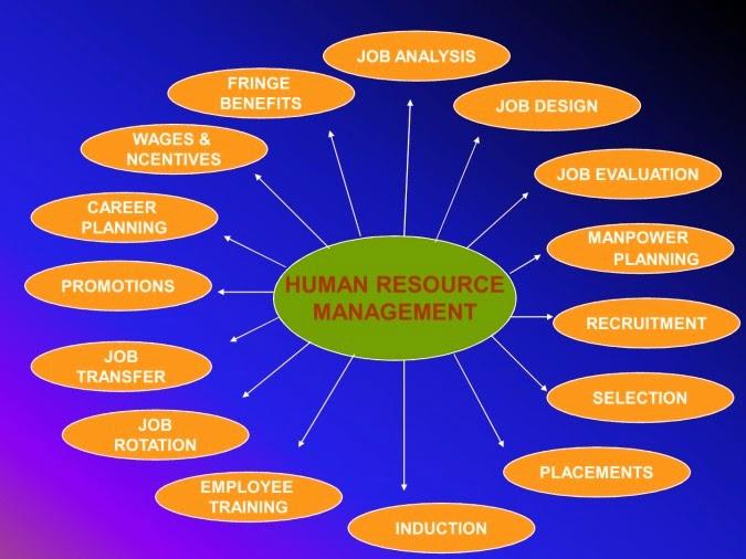 Seminaj Manajemen Keuangan Essay Sample