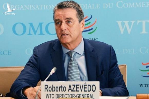 Tổng giám đốc Tổ chức thương mại thế giới - WTO bất ngờ từ chức