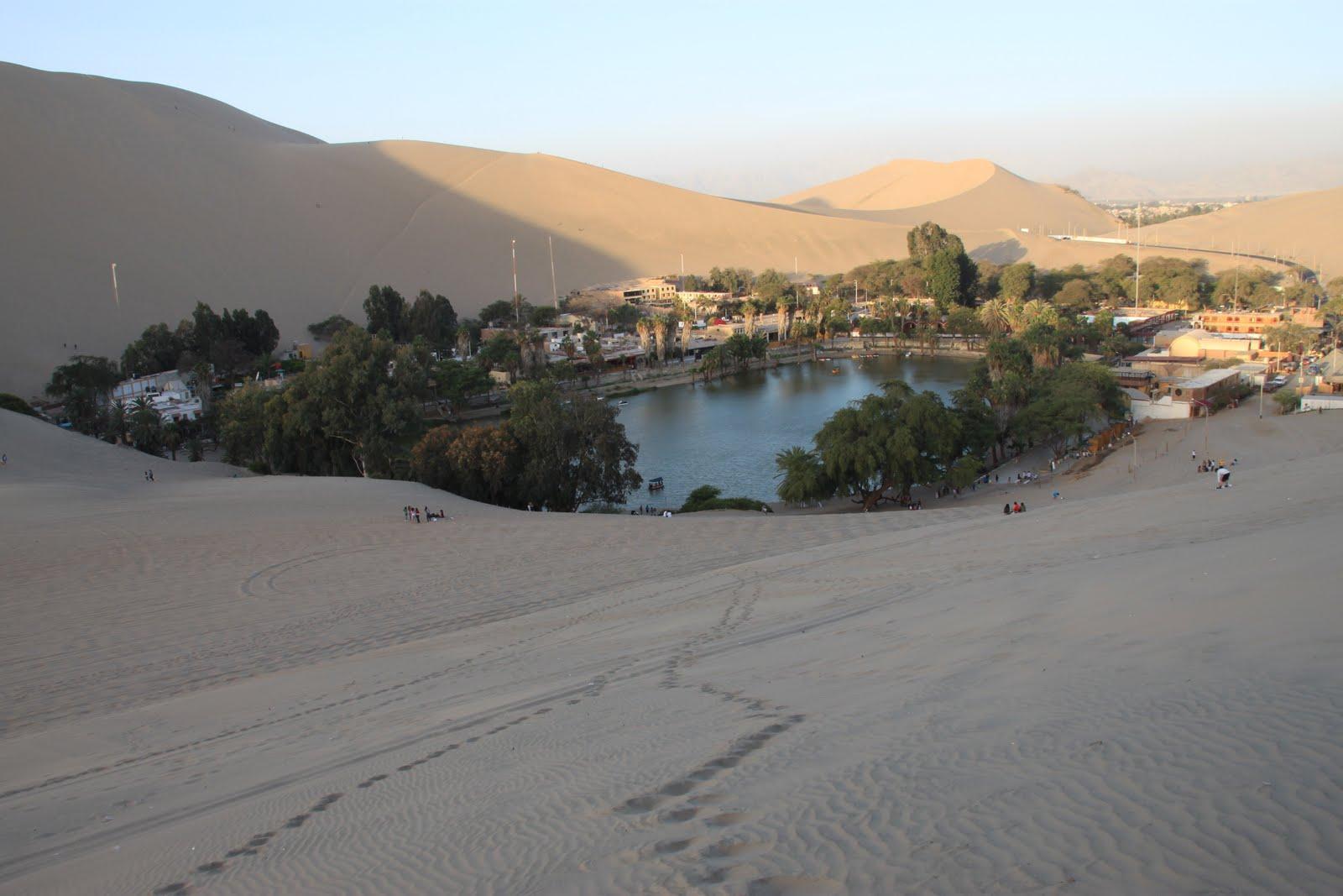 Real Desert Oasis
