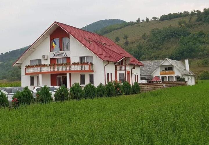 Pension Domnika Guesthouse Dej