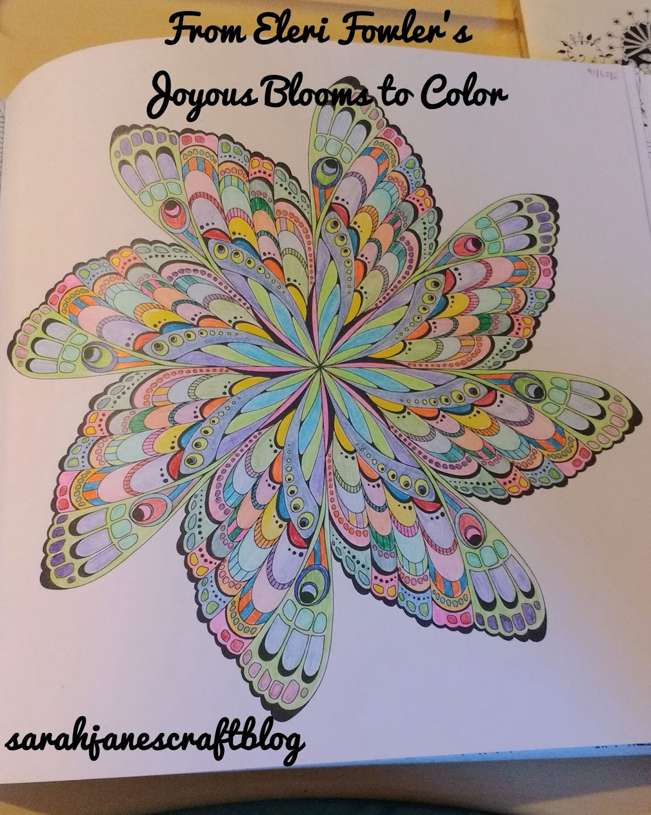 The secret garden coloring book barnes and noble - As For Coloring Books I Have Flipped Through Dozens Of Them At Barnes And Noble And Walmart They Have A Surprisingly Large Collection Of Them In The Book