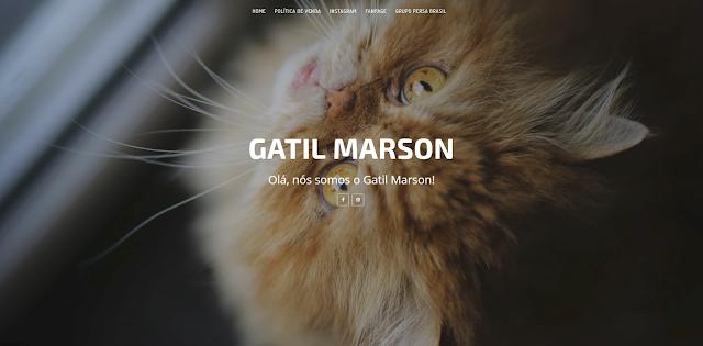 Personalização da página Gatil Marson