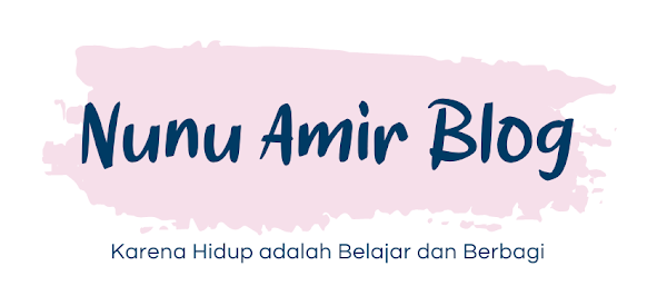 Nunu Amir Blog
