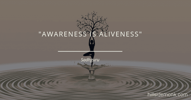 Sadguru Quotes-14 Awareness is aliveness ~ Sadhguru