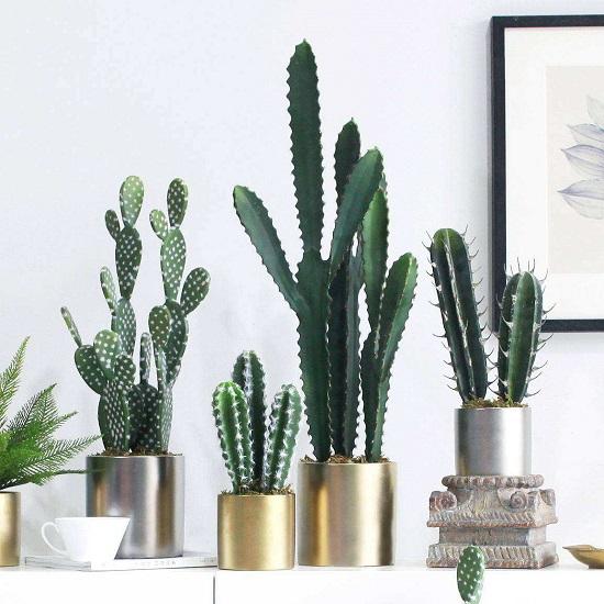 """5 loại cây """"phá phong thủy"""", tuyệt đối không nên trồng trong nhà"""