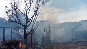 Sikapi Bencana Kebakaran Sianjurmula, Pemkab Samosir Siapkan Bantuan Darurat