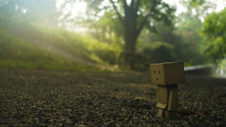 Boxman lonely nature pictures