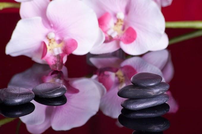 List of Best Massage Parlors in Portland, OREGON
