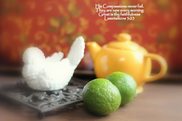 Limes, Beautiful Dove, Living From Glory To Glory Blog...