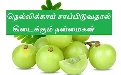 Gooseberry Benefits in tamil