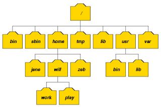 Mengenal Operasi File dan Struktur Direktory Pada Linux