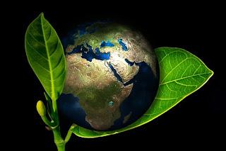 Kondisi yang Menyebabkan Bumi Layak untuk Ditinggali Makhluk Hidup