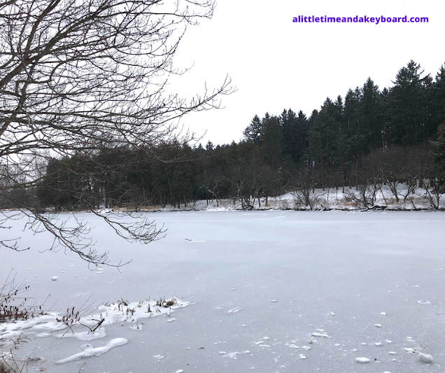 Winter calm at frozen Lake Marmo at The Morton Arboretum.