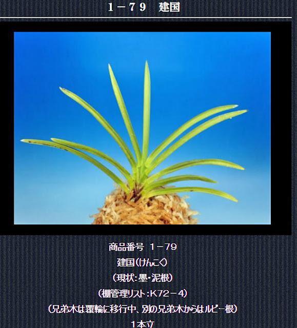 http://www.fuuran.jp/1-79html