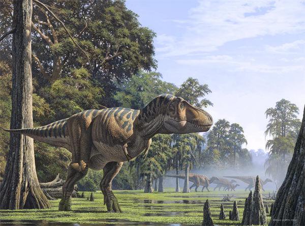 Se puto acab galer a tyrannosaurus rex - Liste des dinosaures carnivores ...