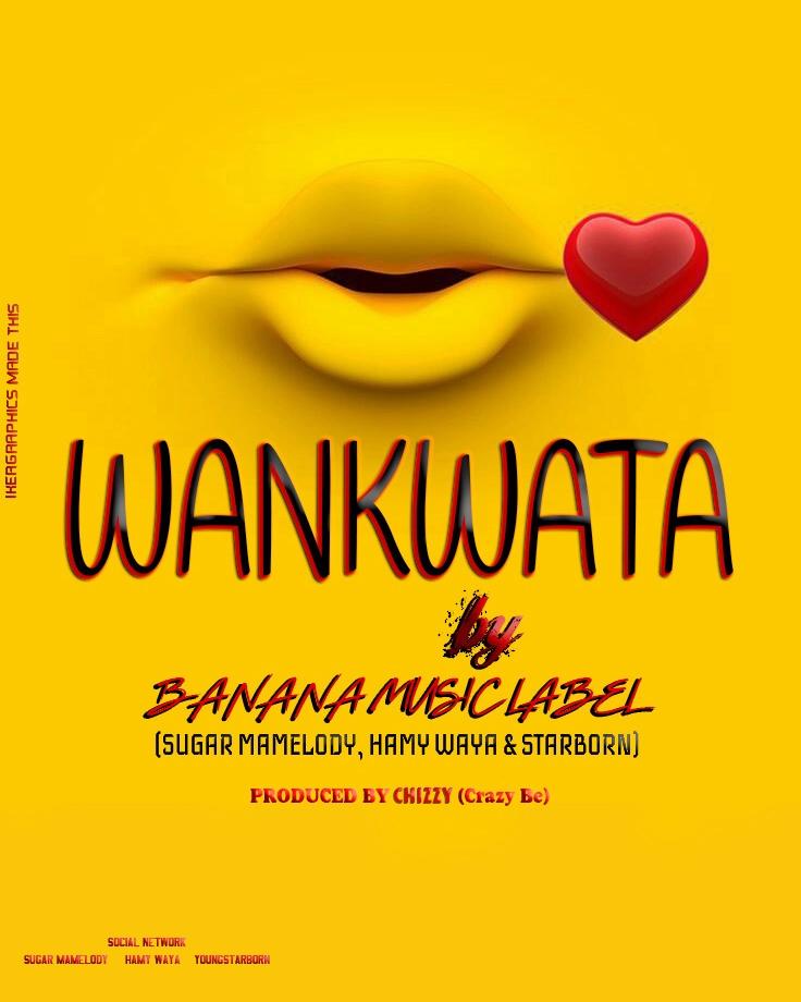Sugar Mamelody, Hamy Waya & Starborn - WANKWATA