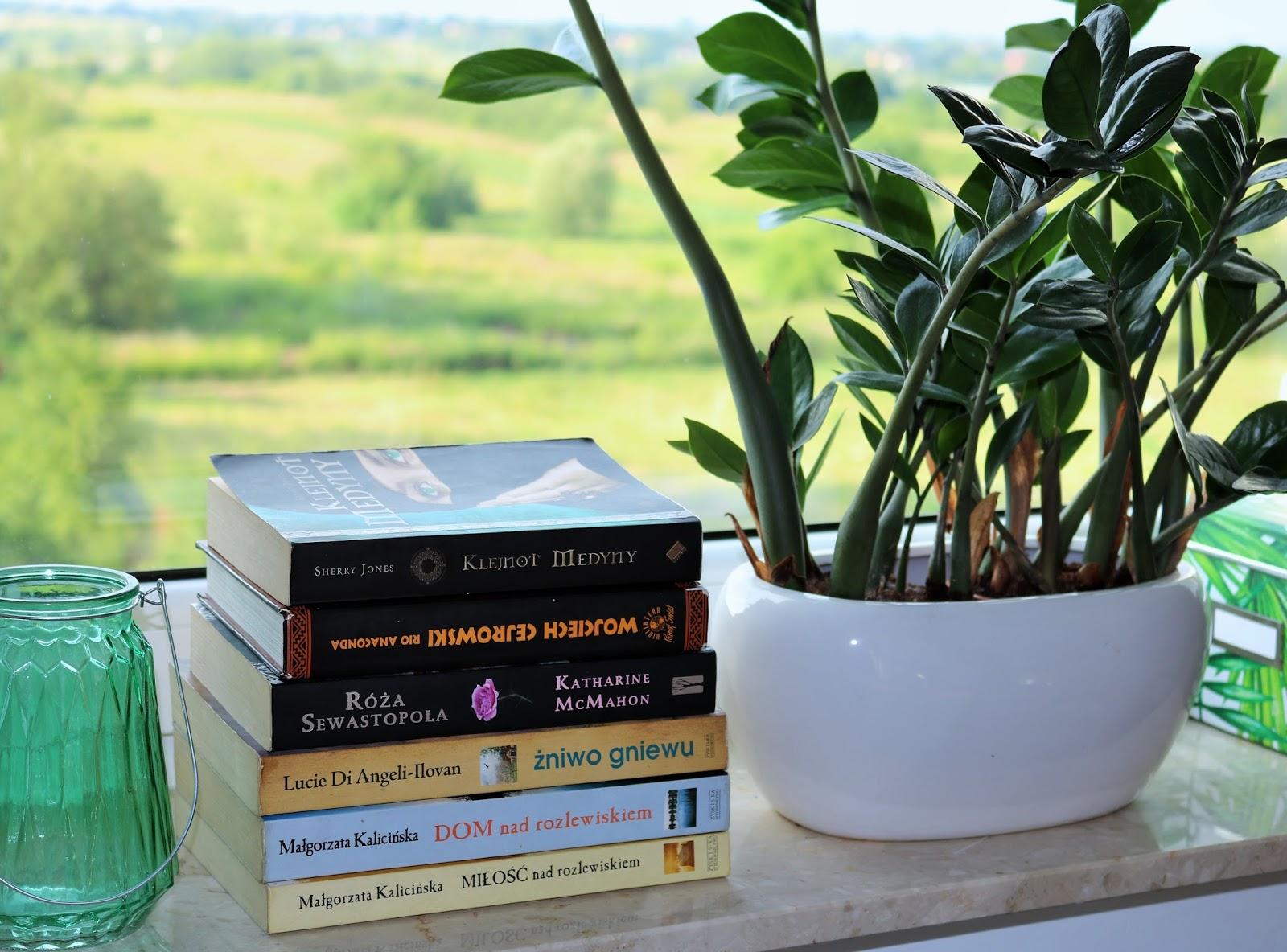 jakie książki zabrać na wakacje
