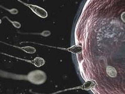 8 lưu ý cần thiết trước khi mang thai