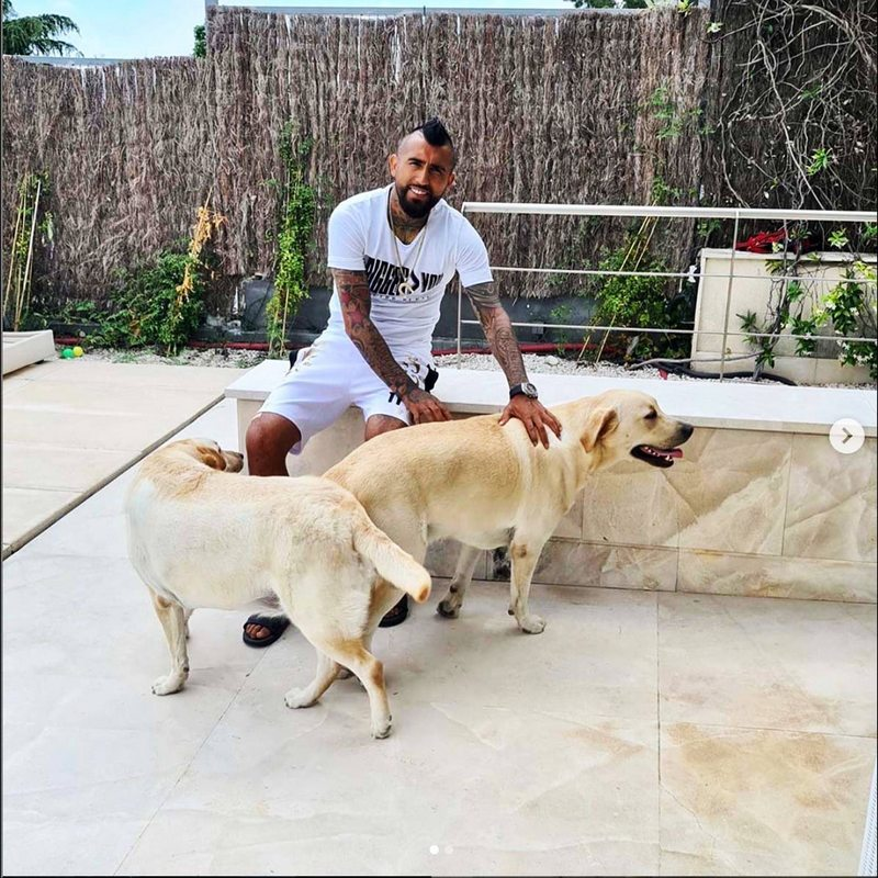 Arturo Vidal les regaló dos perros labradores a sus hijos