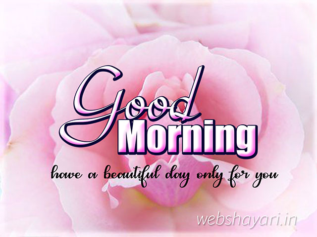 good morning images with rose for whatsapp good morning photo hd