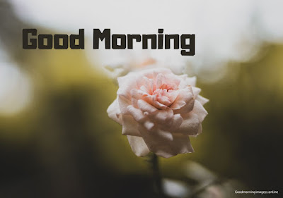 good morning images marathi