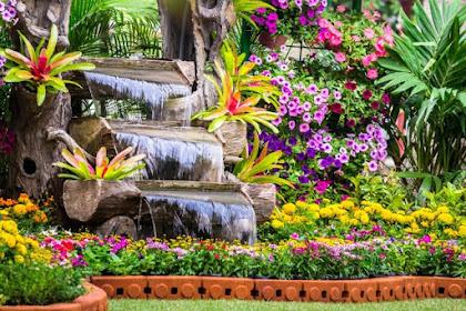Jenis Tanaman Bunga Hias yang Cantik Depan Rumah