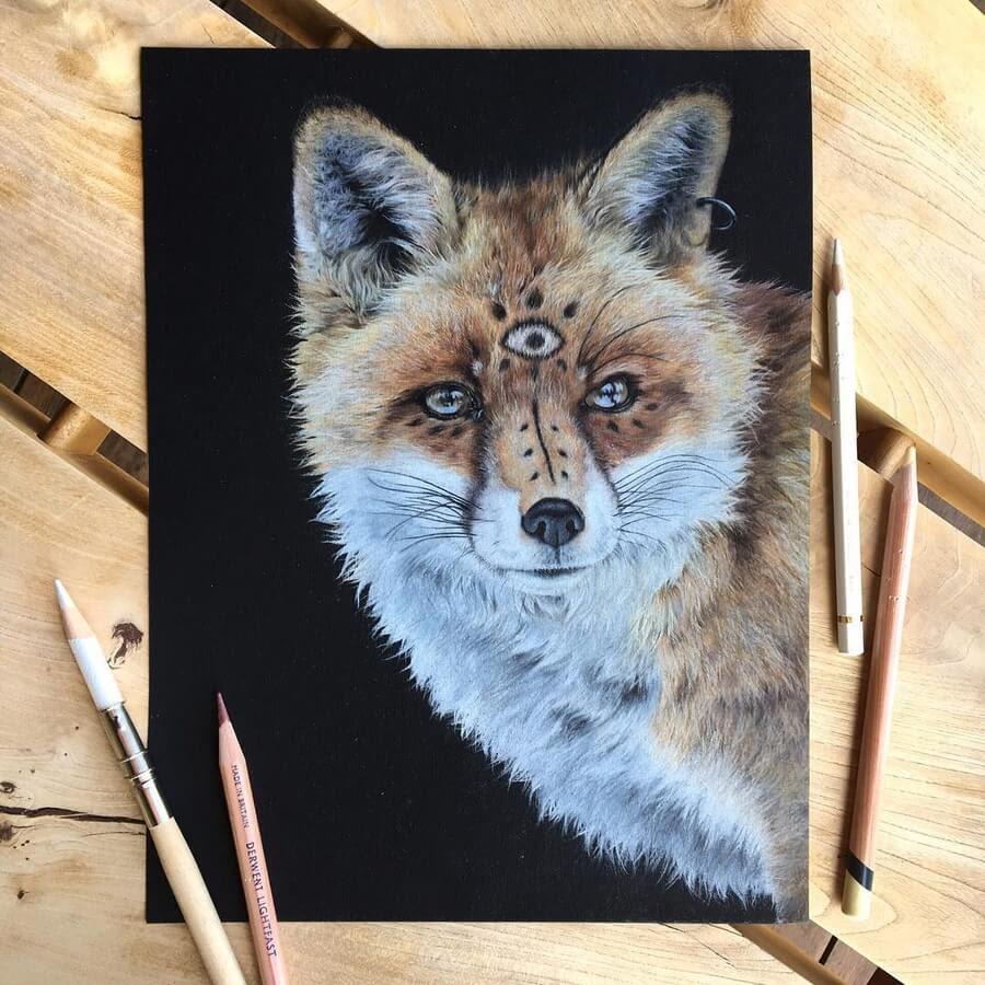 02-Fox-Ruzanna-www-designstack-co